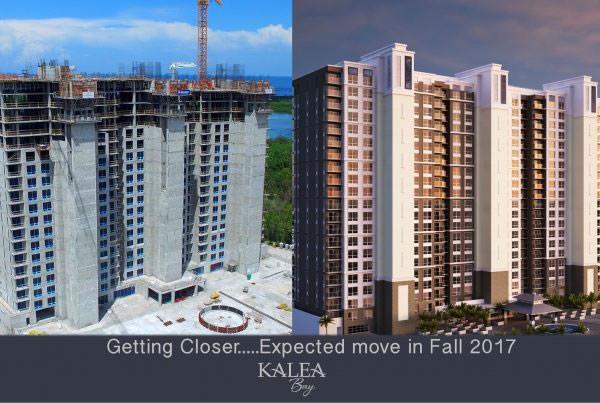 facebook blog kalea