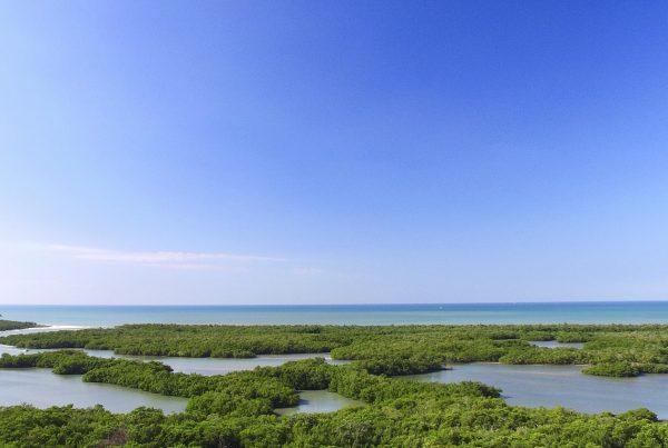 Kalea Bay View